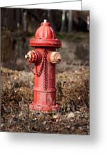 Fire Hydrant #16 Greeting Card