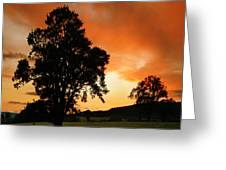 Fire On The Sky Greeting Card