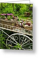Flower Cart In Garden Greeting Card by Elena Elisseeva