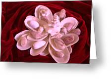 Flower Shell Greeting Card by Arlin Jules