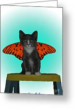 Flying Kitty Greeting Card