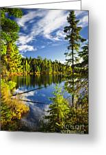 Forest And Sky Reflecting In Lake Greeting Card