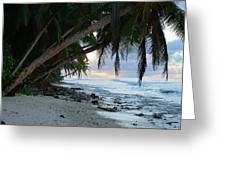 Forest Beach Greeting Card