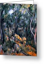 Forest In The Caves Above The Chateau Noir Greeting Card