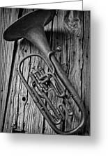 Forgotten Tuba Greeting Card