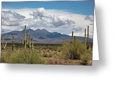 Four Peaks In May Greeting Card