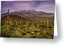 Four Peaks Golden Hour  Greeting Card