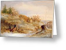 Fox And Pheasants In Winter Greeting Card by Anonymous