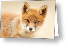 Foxy Face Greeting Card