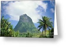French Polynesia Moorea Greeting Card