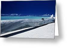 French Polynesia, Tetiaro Greeting Card