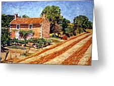 Fresh Cut Hay Provence Greeting Card