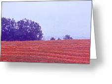 Freshly Cut Hay Ae Greeting Card