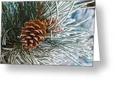 Frosty Pine Needles And Pine Cones Greeting Card
