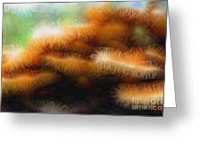 Fungus Tendrils Greeting Card by Ron Bissett