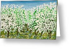 Garden In Blossom Greeting Card