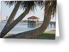 Gazebo Dock Framed By Leaning Palms Greeting Card
