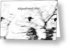 Geese Flyover Greeting Card