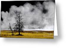 Geysers And Steam Rising In Yellowstone National Park Greeting Card