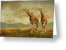 Giraffes In The Meadow Greeting Card