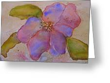 Glory Flower Greeting Card