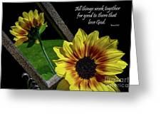 God's Creation Greeting Card