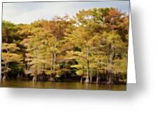 Golden Bayou Greeting Card