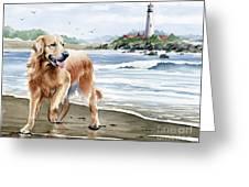 Golden Retriever At The Beach Greeting Card