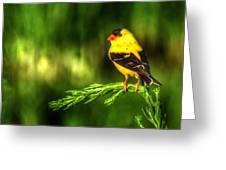 Goldfinch On Grass Greeting Card