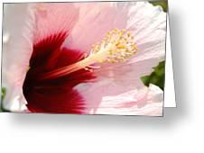 Good Morning World Greeting Card