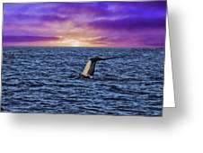 Good Night Newport Beach Greeting Card