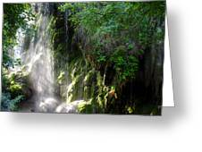 Gormon Falls Colorado Bend State Park.  Greeting Card