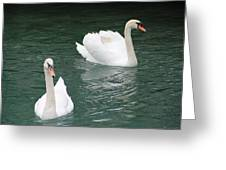 Grace And Charm Greeting Card