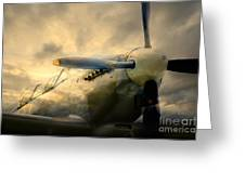Grace Spitfire Ml407 Greeting Card