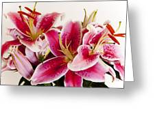 Graceful Lily Series 11 Greeting Card