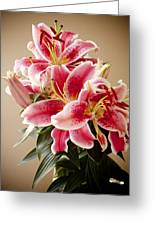 Graceful Lily Series 12 Greeting Card