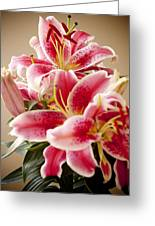 Graceful Lily Series 13 Greeting Card