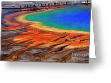 Grand Prismatic Spring Yellowstone National Park Tourists Viewin Greeting Card