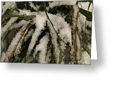 Grass In Snow 2 Greeting Card