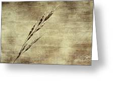 Grass Seeds Greeting Card
