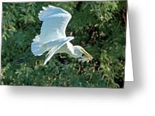 Great Egret With Fish Greeting Card