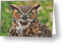 Great Horn Owl Nature Educator Greeting Card