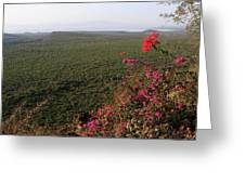 Great Rift Valley Ethiopia Greeting Card