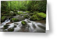Great Smoky Mountains Roaring Fork Greeting Card