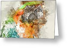 Green And Orange Macaw Bird Digital Watercolor On Photograph Greeting Card