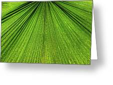 Green Lines Greeting Card