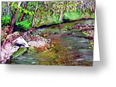 Greesy Creek Greeting Card