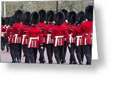 Grenadier Guards Greeting Card