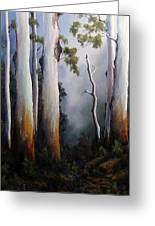 Gumtrees After The Rain Greeting Card