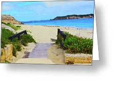 Hamelin Bay Greeting Card